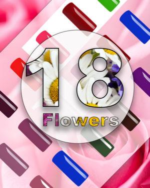 – SOLO ADESSO – 18 Flowers